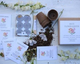 White Flower Seeds Garden Kit, White Flower Seeds, Diy Kit, Seed Kit,