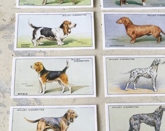 A set of 50 Will's cigarette cards Dogs