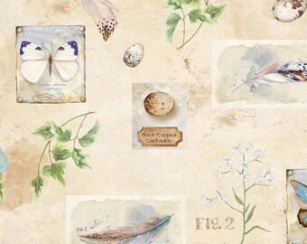 Half Yard Nature Study Ivory Fabric Quilting Cotton