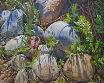Print of 'Rock Garden' Original Oil Painting by Jurgen Wilms, 8x10 inches, Southwestern Landscape Painting, Stones, Rocks
