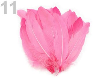 011 - Set of 5 16/21 cm pink goose feathers
