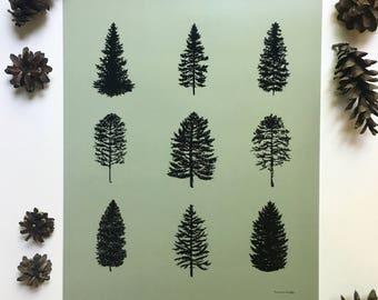 Coniferous Trees Print - Green