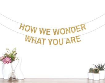 How We Wonder What You Are Banner, Twinkle Twinkle Little Star Banner, Birthday Banner, Baby Shower Banner, Party Decorations, Star Garland