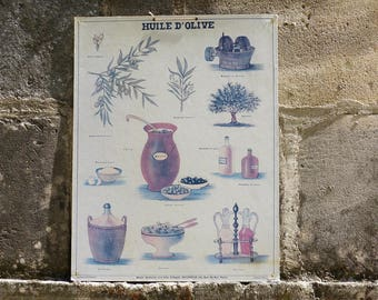 Vintage French School Poster - Deyrolle Poster - Huile d'Olive - Musee Scolaire French Vintage Educational Poster on Board - Olive Oil