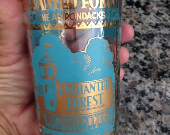 The Enchanted Forest of the Adirondacks Old Forge, New York Souvenir Glass