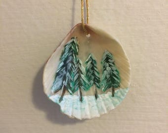 Hand Painted Sea Shell
