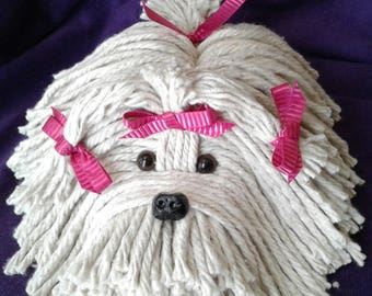 Mop Puppy Dog -Havanese - Shih Tzu - Maltese - Lhasa Apso - Bichon  - Schnauzer - Coton De Tulear - Terrier - Lowchen - Pet - Westie