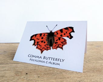 Comma Butterfly Card A6 size