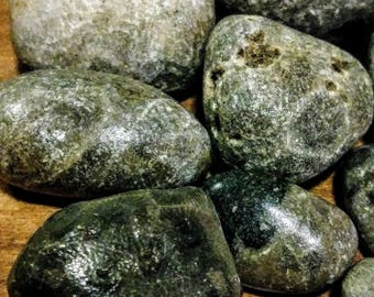 9 Polished Petoskey Stones, lightly finished, from Lake Michigan, coral fossil