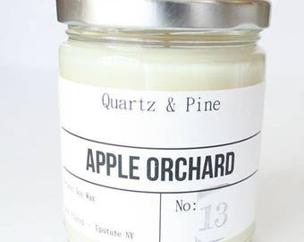 SALE Apple Orchard | Apple Orchard scented | Soy Candle | Hand Poured | Fall Candle