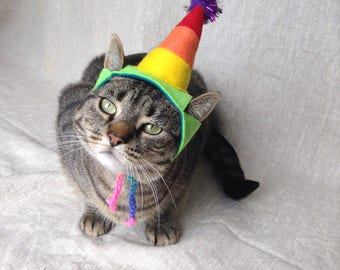 Rainbow Party Hat for Cats
