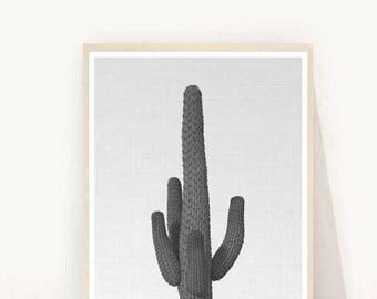 Cactus Print, Cactus Prints, Cactus Art, Cacti Print, Printable Art, Desert Wall Art, Wall Decor, Instant Download