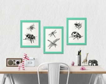 Kids Room Decor, Set Of 3, Black And White Insects Prints, Ladybug Print, Dragonfly Wall Art, Bumblebee Poster, Nursery Decor, Coloring Page