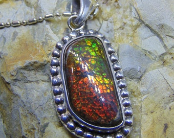 fossilized ammolite solid sterling silver pendant necklace fossil jewelry necklace .925 stabilized free shipping shell pendant