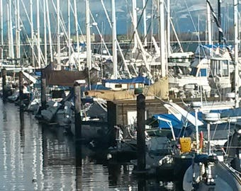 Sailboats at Anacortes Washington