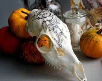 """Hand painted skull of deer """"Flower collection"""""""