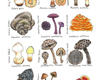 For the Love of Fungus Print
