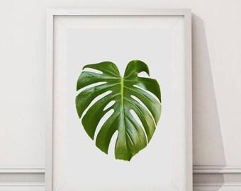 Poster, botanical Greenery Print, Monstera Leaf Print, Jungle, Green Leaves Photo,Printable, Tropical Decor, Art, Instant Download, Wall Art
