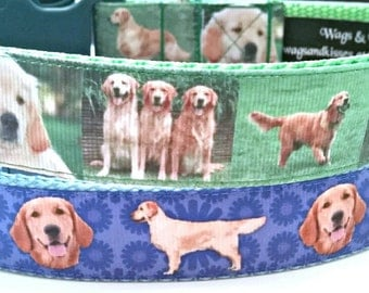 "Golden Retriever Dog Collar (L-XL) 1"" wide"