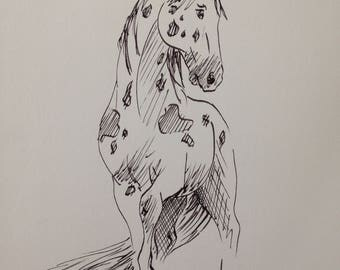Appaloosa - original ink drawing