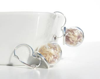 Glass globe earrings / herbal seeds