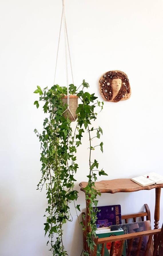 porte pot de plante support de pot suspendu plantes en. Black Bedroom Furniture Sets. Home Design Ideas