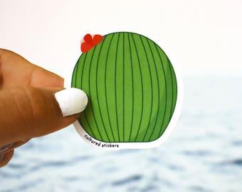 Cool Cactus Sticker, Waterproof