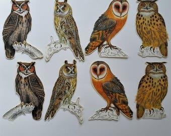 8 x Owl stickers.  Vintage style. Snail mail hobonichi midori planner journal decorations. Ephemera.