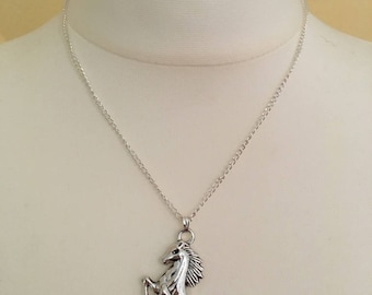 Necklace horse, Necklace horse, Collier, equestrian, riding, riding