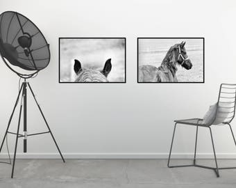 Large Horse Wall Decor, Horse Printable Photography, Black and White Horse Printable, Black and White Horse Print, Horse Print Set