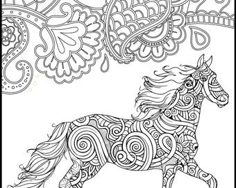 horse coloring page for adults horse adult coloring page printable coloring page horse - Printable Coloring Pages Of Horses