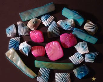 24 shell and blue shell beads, pink