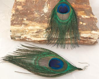 Peacock Feather Earrings (Large)