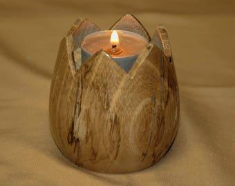 Acacia tulip shaped candle holder