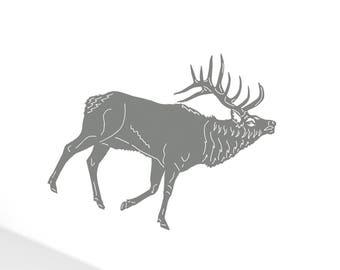 11 Moose