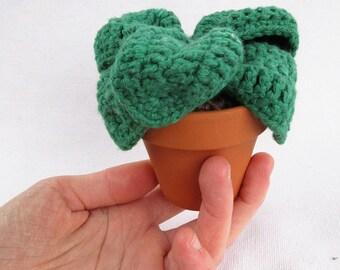 Crochet Plant, Leafy Plant, Plush Plant, Home Decor, Succulent, Ready to Ship