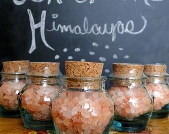 Salt of the Himalayas