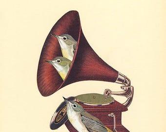 Songbirds.  Collage print by Vivienne Strauss.