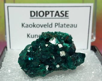 Sale DIOPTASE Top Quality Bright Teal Blue Green Crystal Mineral Specimen In Perky Box From Namibia