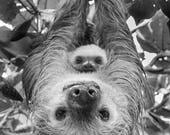 Animal Nursery Art, MOM a...