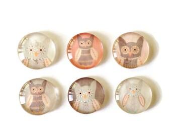 Set of 6 // Glass Magnets // Owl Magnets // Fridge Magnets // Refrigerator Magnets // Kitchen Decor // Owl Decor // Stocking Stuffer