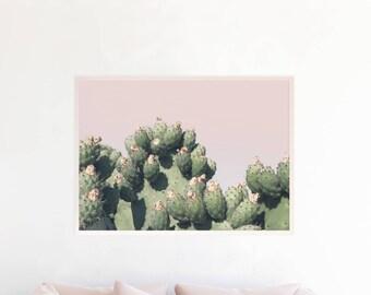 Cactus Art Print, Cactus Large Poster, Cactus Photography, Pastel Wall Art, Boho Decor, Prickly Pear Photo Cactus Printable Download, c5pgl