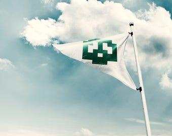 Super Mario Bros Flag