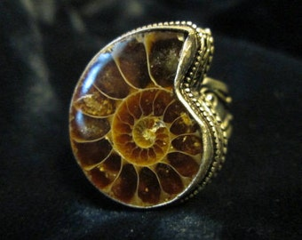 Charged Empath Protection Ammonite Sterling Silver Ring Size 8