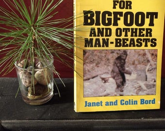 Evidence for Bigfoot and Other Man-Beasts - Illustrated Sasquatch Photos  Bigfoot Book Yeti Abominable Snowman Bigfoot and UFO Connection