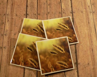 Wheat Field - Coaster Set