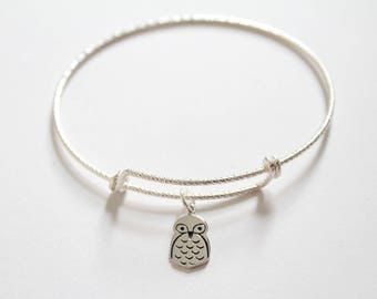 Sterling Silver Bracelet with Sterling Silver Owl Charm, Owl Bracelet, Owl Charm Bracelet, Silver Owl Bracelet, Owl Pendant Bracelet