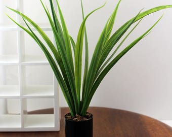 Tall Tropical Plant - Miniature Modern decor, 1/12 or 1/6 scale