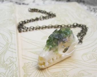 Bat Skull Necklace - Taxidermy Jewelry - Real Animal Skull Necklace - Animal Bones - Bone Jewelry - Crystallized Skull