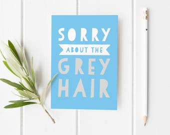 Sorry About The Grey Hair, Funny Father's Day Card, Funny Card For Dad, Cheeky Father's Day Card, Funny Fathers Day Card, Funny Card Stepdad